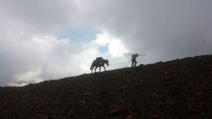 IMG 20160612 WA0000 300x169 - Porteo de avituallamientos, Trekking Mule.