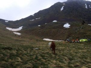 IMG 20160613 WA0001 300x225 - Porteo de avituallamientos, Trekking Mule.